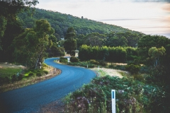 On the road - Winding laneways