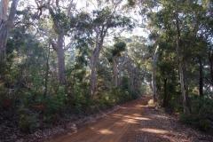 Leafy Laneways