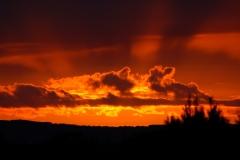 Sunsets a plenty